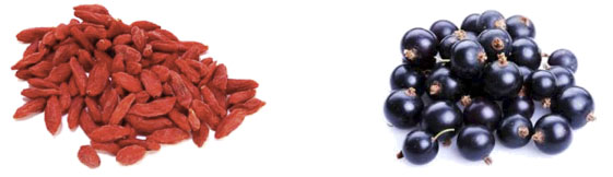 Las desconocidas conocidas bayas de goji y bayas de acai