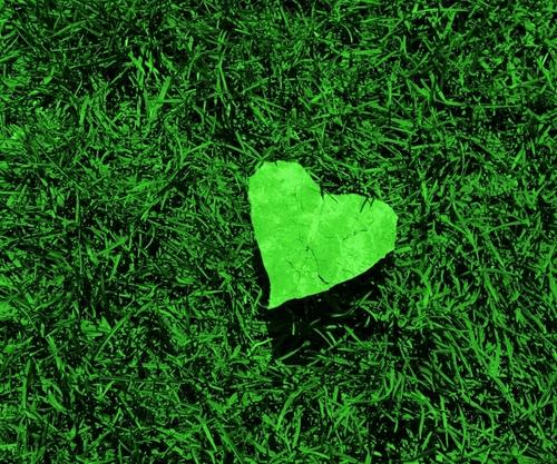 Psicolog a del color en el marketing verde - Color verde hoja ...