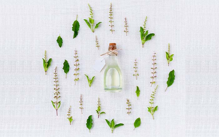 Diferencia entre producto ecológico, biológico y orgánico