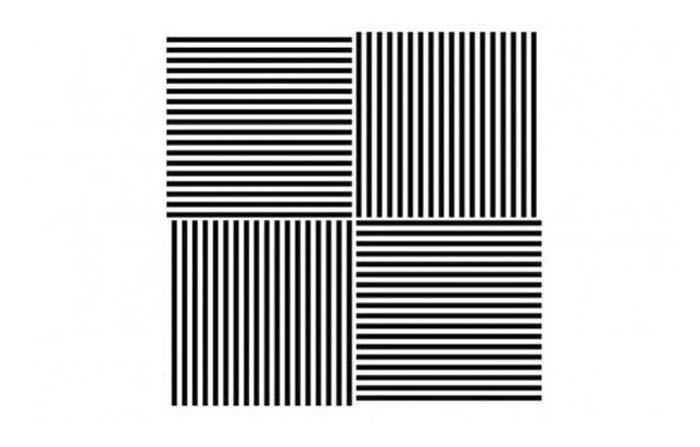 Papel estratégico de las líneas en la identidad visual de marca