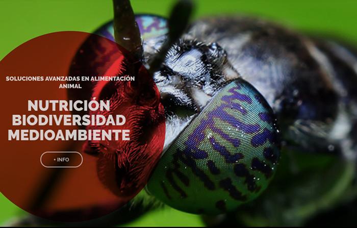 Productos singulares: BioFlyTech biomasa de insectos
