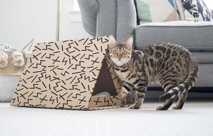Productos singulares: Boxie Pet Homes, casitas DIY para mascotas