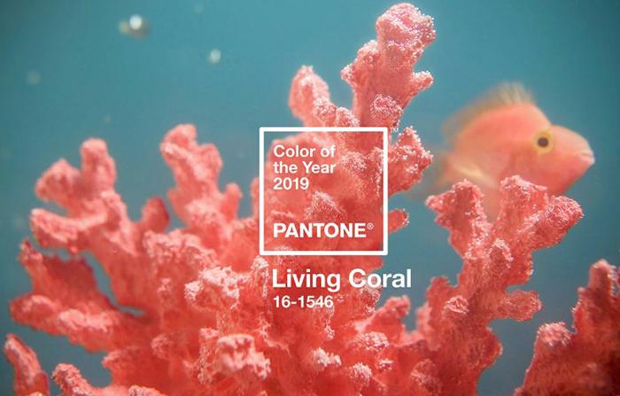 Nuevo color del año 2019: Pantone Living Coral 16-1546