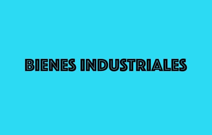 Principales tipos de mercado y sus características: Bienes industriales