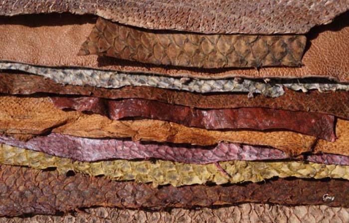 Femer, piel de pescado transformada en cuero para productos de moda