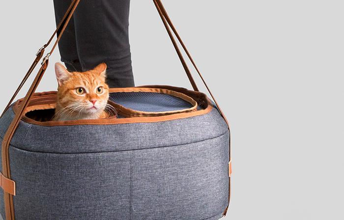 Hoonico, mochilas y bolsos especiales para llevar a tu mascota contigo