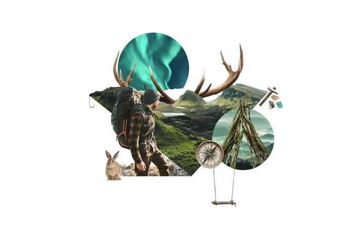 Informe de tendencias inspiradoras Pinterest 100: Regreso a la naturaleza