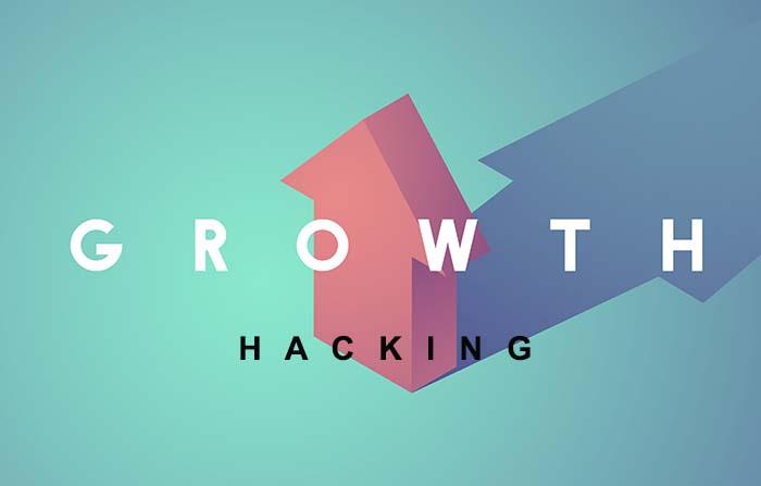 Growth Hawking, técnicas para el crecimiento en entornos digitales